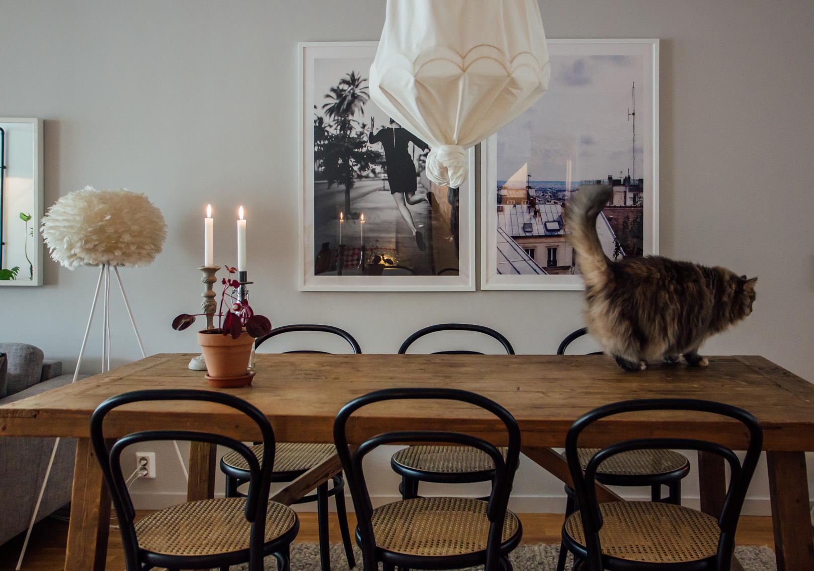 hemma hos trea matplats katt midbec tapeter